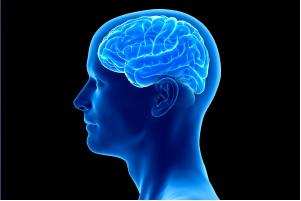 Electroencefalograma Cuantificado (Cartografía, Reparto de Frecuencias, Etc.)