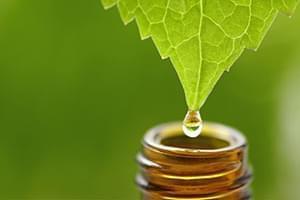 Consulta de Homeopatía